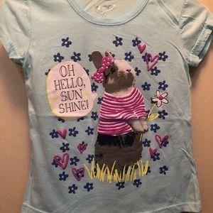 🐣 Easter/Spring time shirt. NWOT. Adorable shirt